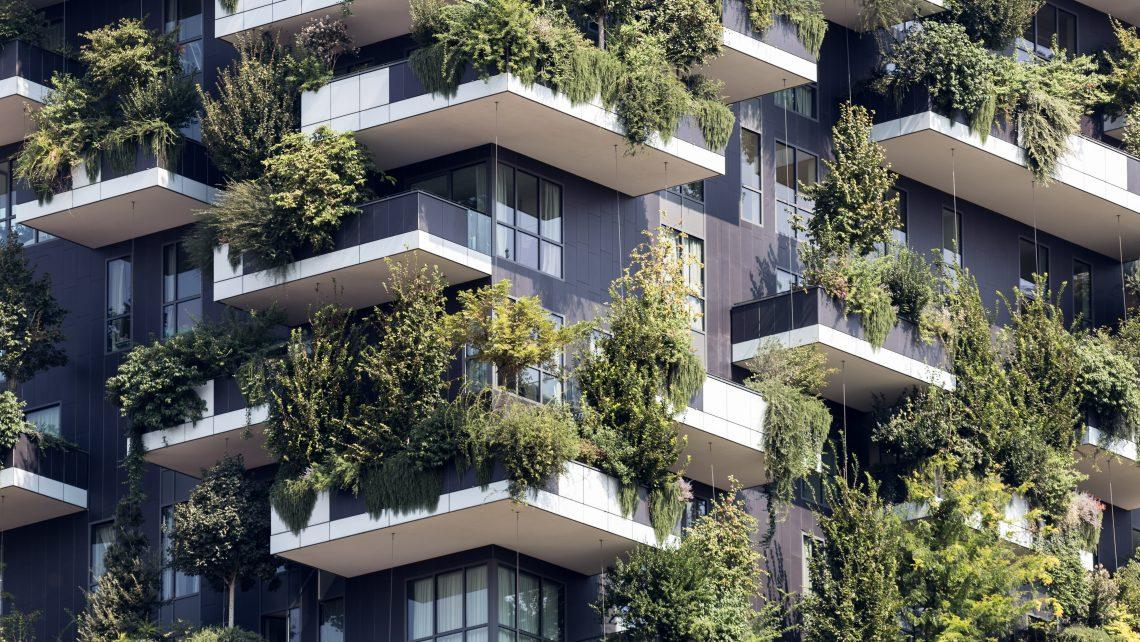 Plants Balconies